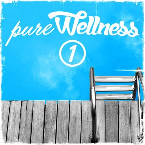 VA - Pure Wellness 1 (2016)