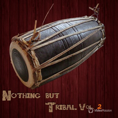 VA — Nothing But Tribal, Vol. 2 (2016)