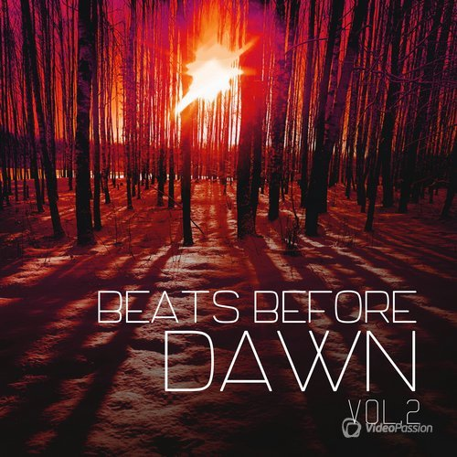 VA — Beats Before Dawn, Vol. 2 (2016)