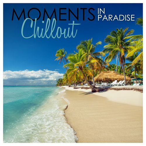 VA - Moments in Paradise Chillout (2016)