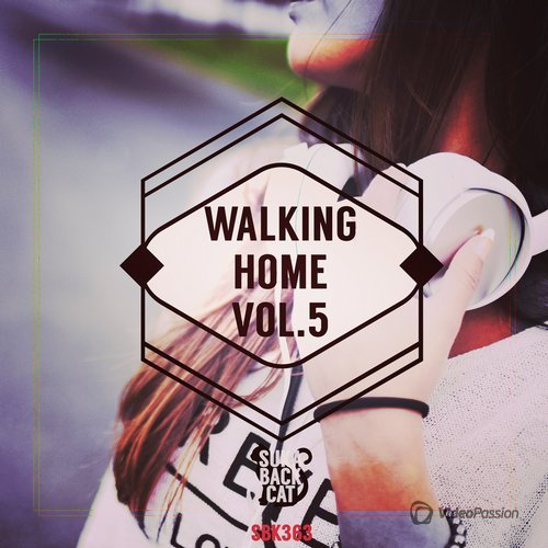 VA — Walking Home, Vol. 5 (2016)