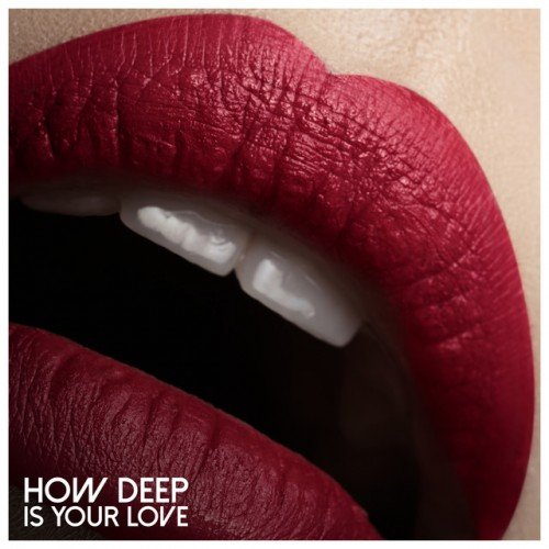 VA - How Deep Is Your Love (2016)