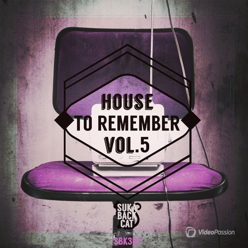House to Remember, Vol. 5 (2016)
