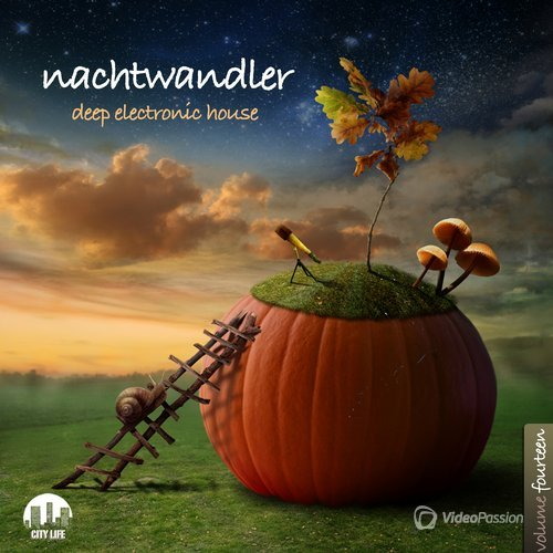 Nachtwandler, Vol. 14 - Deep Electronic House (2016)