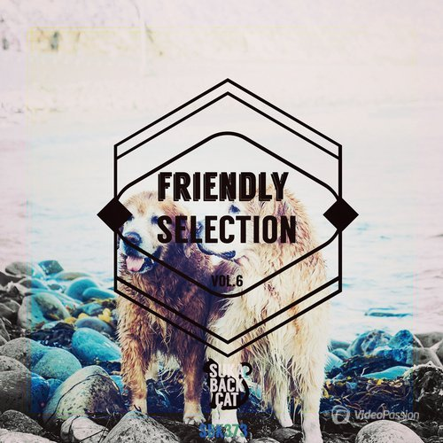 VA — Friendly Selection, Vol. 6 (2016)