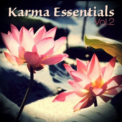 VA - Karma Essentials Vol.2 (2016)