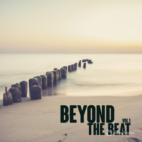Beyond the Beat, Vol. 1 (2016)