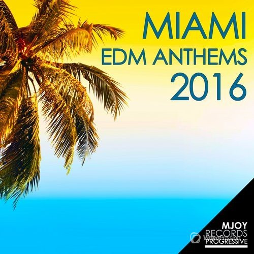 Miami EDM Anthems 2016 (2016)