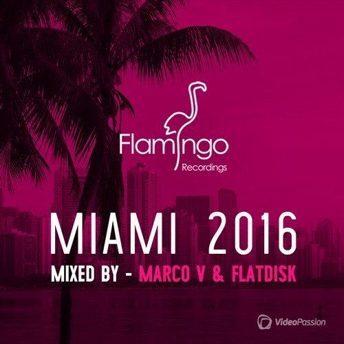Flamingo Miami 2016 (2016)