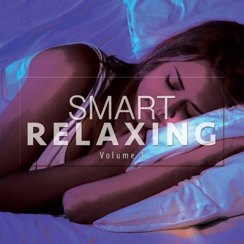 VA - Smart Relaxing Vol.1: Finest Chill Selection (2016)