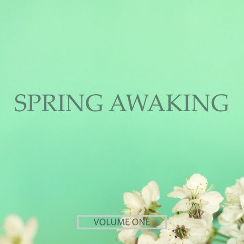 VA - Spring Awaking Vol.1: Finest Selection Of Chill Out and Ambient Music (2016)
