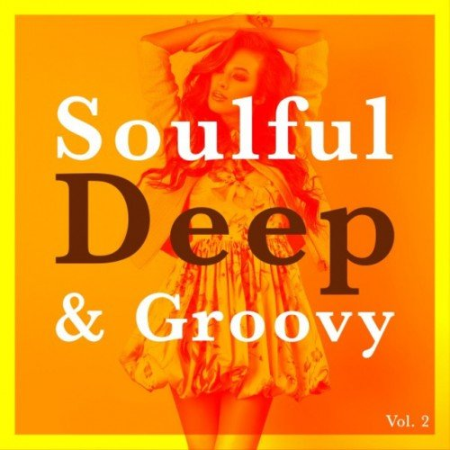 VA - Soulful Deep and Groovy Vol.2 (2016)