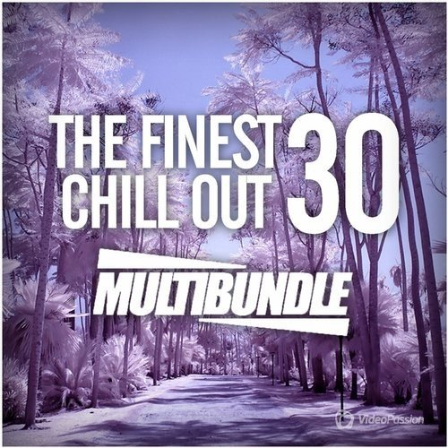 The Finest 30 Chill Out Multibundle (2016)