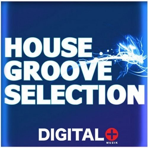 VA - House Groove Selection (2016)