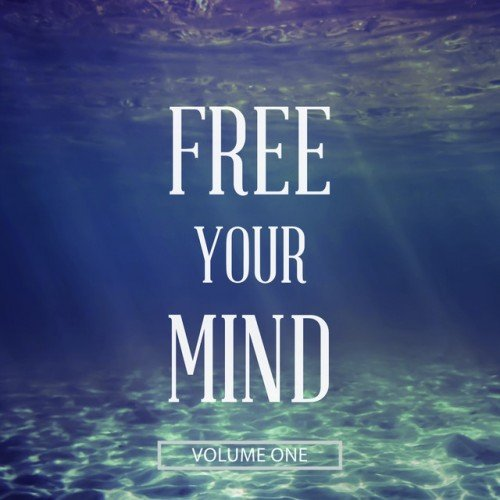 VA - Free Your Mind Vol.1: Finest Sit Down and Relax Music (2016)