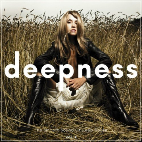 VA - Deepness: The Smooth Sound of Deep House Vol.2 (2016)