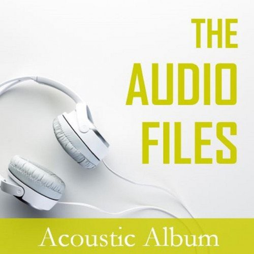 VA - The Audio Files: Acoustic Album (2016)