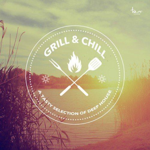 VA - Grill and Chill (2016)