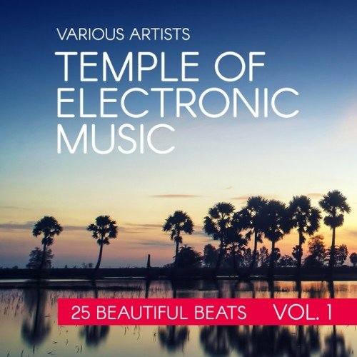 VA - Temple Of Electronic Music: 25 Beautiful Beats Vol.1 (2016)