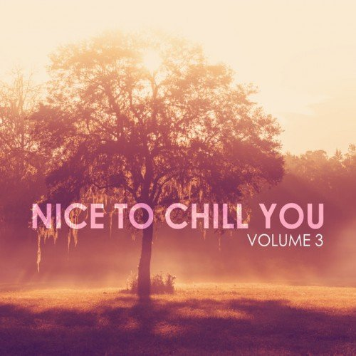 VA - Nice to Chill You Vol.3 (2016)