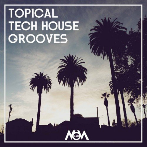 VA - Topical Tech House Grooves (2016)