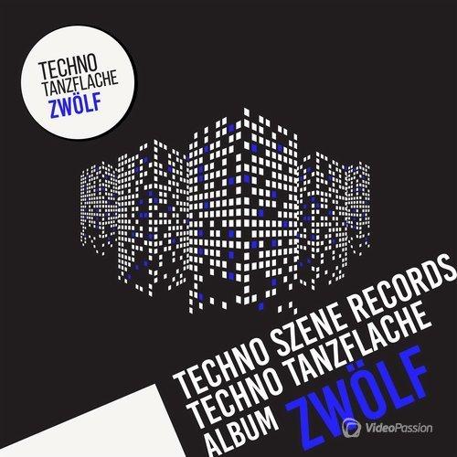 Techno - Tanzflache Album Zwolf 2016