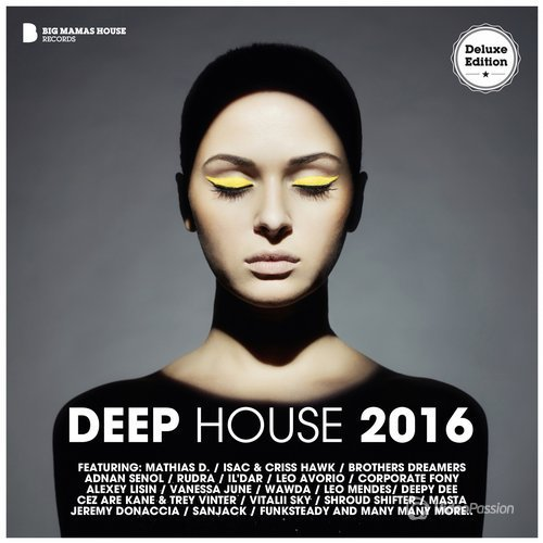 Deep House 2016 (Deluxe Version) (2016)