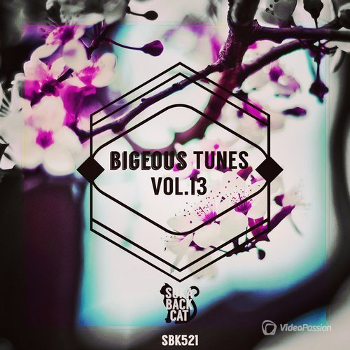 Bigeous Tunes, Vol. 13 (2016)