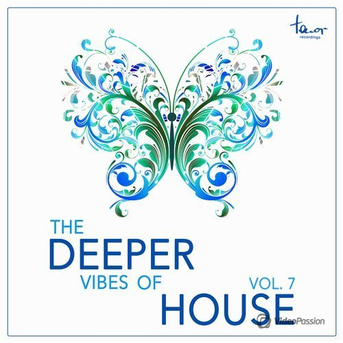 The Deeper Vibes of House, Vol. 7 (2016)