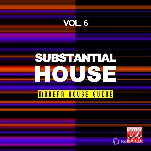 Substantial House, Vol. 6 (Modern House Guide) (2016)