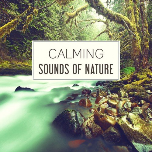 VA - Calming Sounds of Nature: 50 Relaxing Songs for Relaxation, Deep Sleep and Mother Nature (2016)