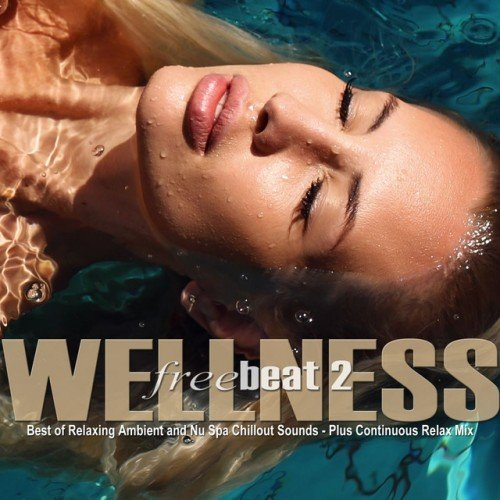 VA - Wellness Freebeat Vol.2: Best of Relaxing Ambient and Nu Spa Chillout Sounds (2016)