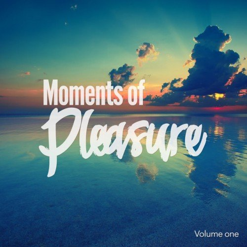 VA - Moments of Pleasure Vol.1: Jazzy and Smooth Chill Out Tunes (2016)