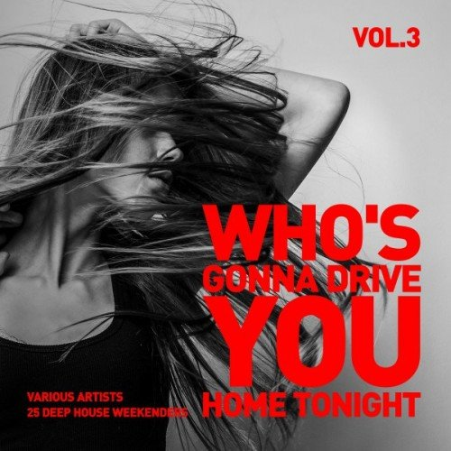 VA - Whos Gonna Drive You Home Tonight: 25 Deep-House Weekenders Vol.3 (2016)