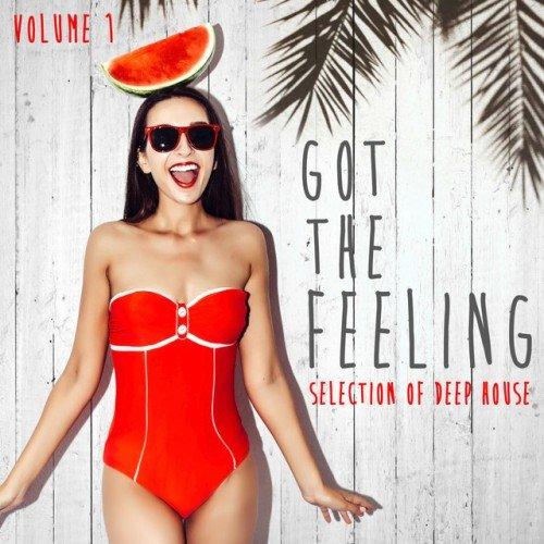 VA - Got the Feeling Collection Vol.1: Selection of Deep House (2016)
