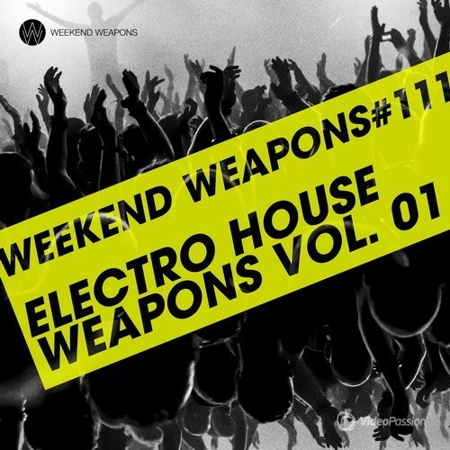 Electro House Weapons Volume 1 (2016)