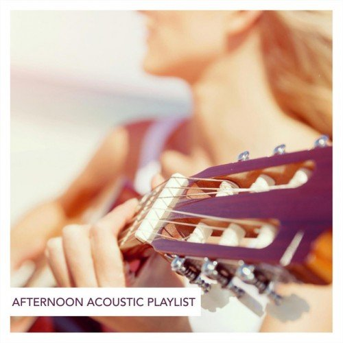 VA - Afternoon Acoustic Playlist (2016)