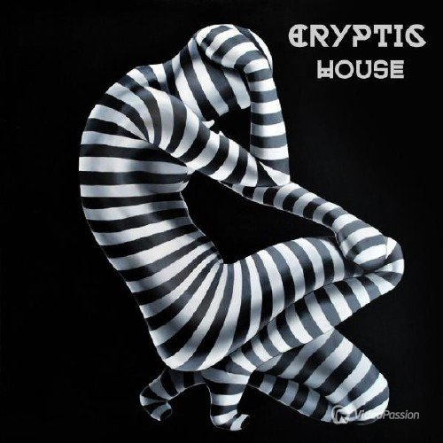 Cryptic House (2016)