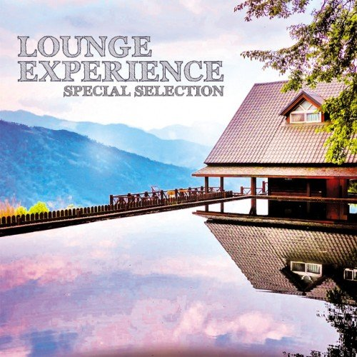 VA - Lounge Experience: Special Selection (2016)