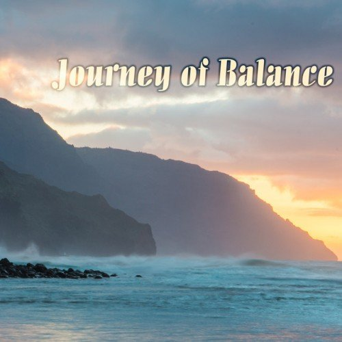 VA - Journey of Balance (2016)