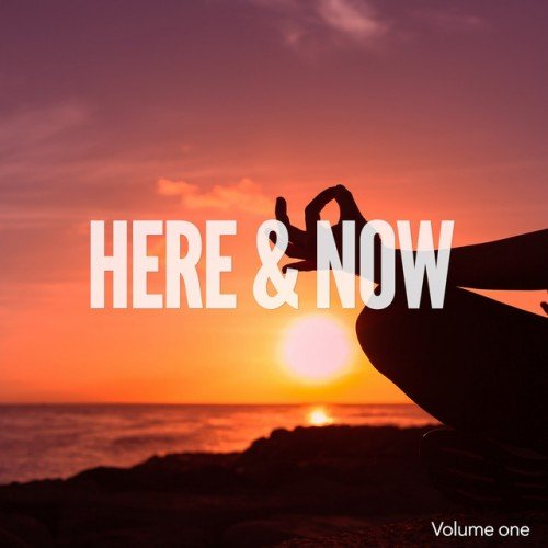 VA - Here and Now Vol.1: Moments of Chill Out and Relaxing (2016)