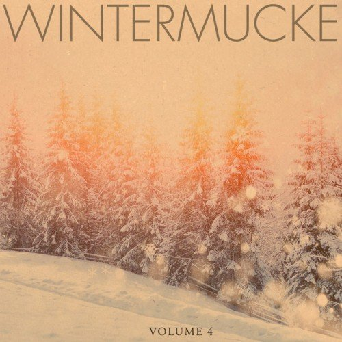 VA - Wintermucke Vol.4: Fantastic Calm and Relaxing Christmas Jazz (2016)