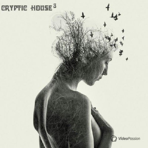Cryptic House Vol. 3 (2017)