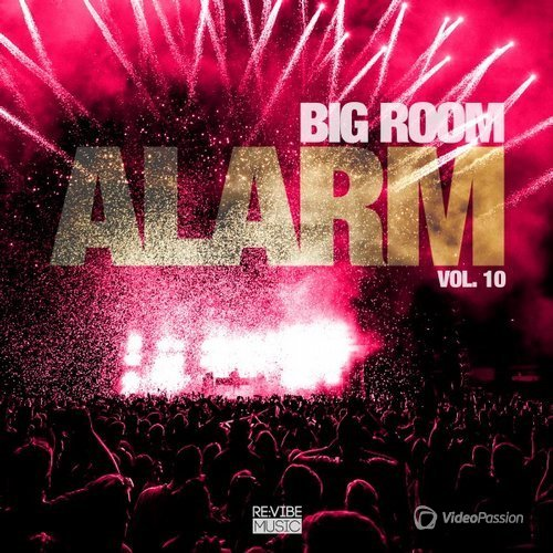 VA - Big Room Alarm Vol 10 (2017)