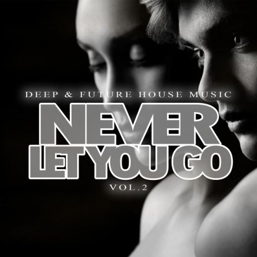 VA - Never Let You Go: Deep and Future House Music Vol.2 (2017)
