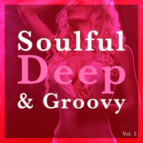 VA - Soulful Deep and Groovy Vol.5 (2017)