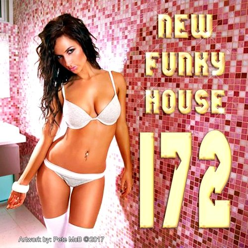 VA-New Funky House 172 February 2017 (2017)