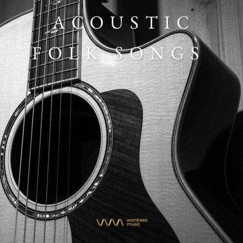VA - Acoustic Folk Songs (2017)