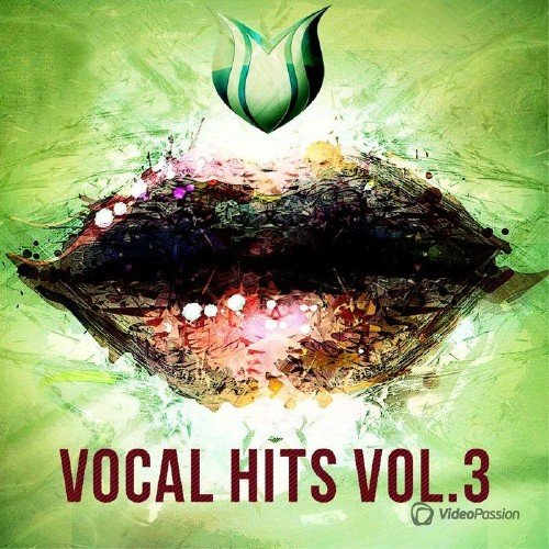 VA - Vocal Hits, Vol. 3 (2017)