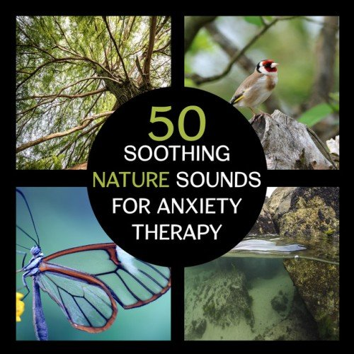 VA - 50 Soothing Nature Sounds for Anxiety Therapy: Peaceful Music to Calm Your Mind (2017)